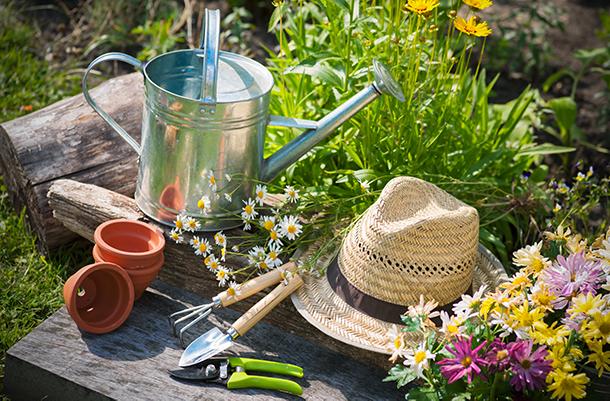 Gardening hobby, reducing stress